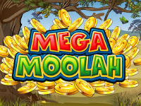 A lucky player won a Microgaming progressive jackpot on a videoslot Mega Moolah
