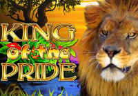 King of the Pride is the newest slot machine at Casumo Casino